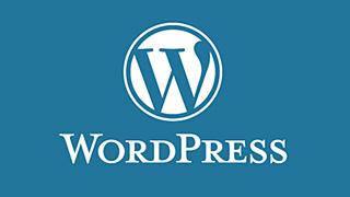 WordPress 4.4版本以后禁用wp-embed的正确方法_themebetter